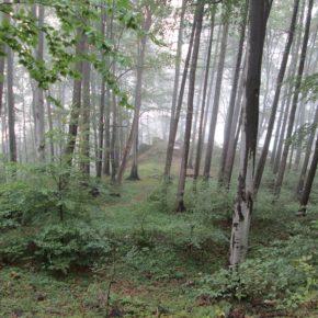Auf nach Zuckmantel - Auf den Spuren deutscher Bergmänner – Teil 1