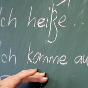Mniejszość nauczy języka