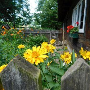 Im schlesischen Garten gab es keine Pedanterie