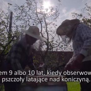 """Schlesien Journal 14-08-2018: Weinanbau in Schlesien / """"Mein Leben - mein Hobby"""" wir stellen Blasius Hanczuch vor"""
