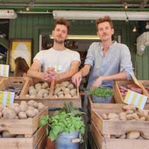 Coole Kartoffeln bringen Glück